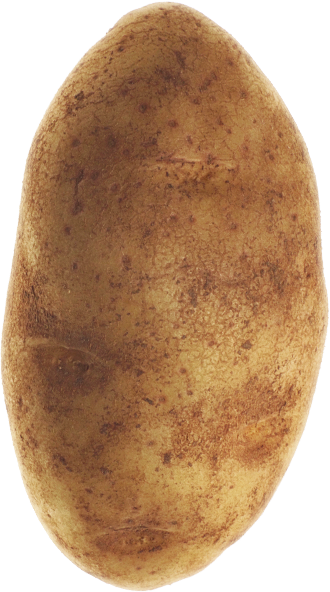 POtato.png.657175ae106961df6bb2af7381fd4760.png
